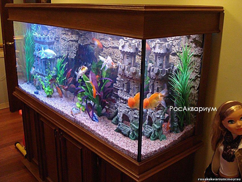 Обустройства аквариума своими руками фото
