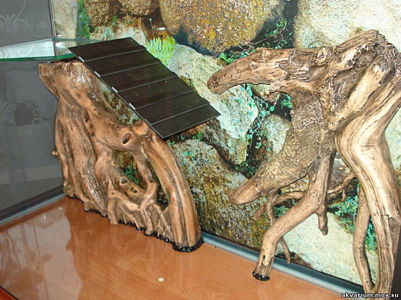 Аквариум черепахи своими руками фото