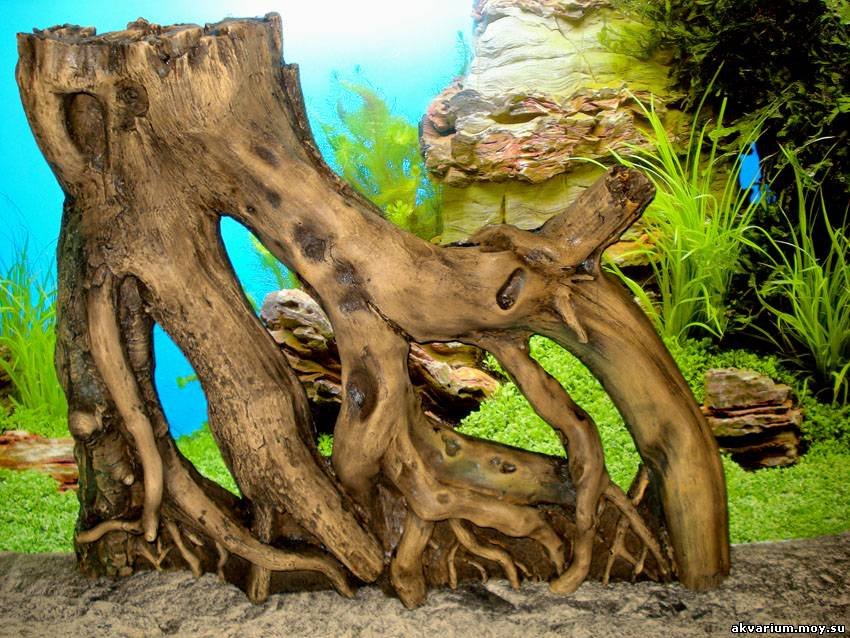 Коряга в аквариум своими руками