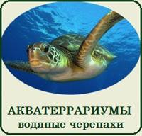 Купить террариум для красноухой черепахи