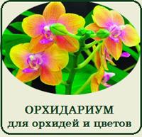 Купить орхидариум террариум для орхидей и растений